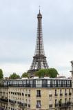 Fototapeta Wieża Eiffla - Tour Eiffel in Paris