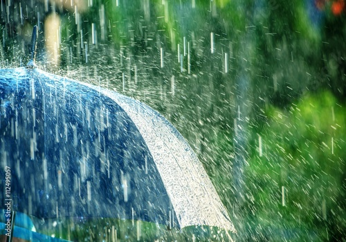 Fotografie, Obraz  Summer Rain Storm