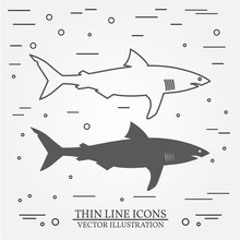 Vector Thin Line Icon And  Silhouette  Shark. For Web Design And Application Interface, Also Useful For Infographics. Vector Dark Grey. Vector Illustration.