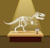 Fototapeta Dinusie - Tyrannosaur Rex bones skeleton in museum exhibition. Vector flat cartoon illustration. Dinosaurs museum