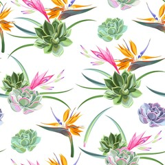 Tapeta Exotic flowers and succulents seamless
