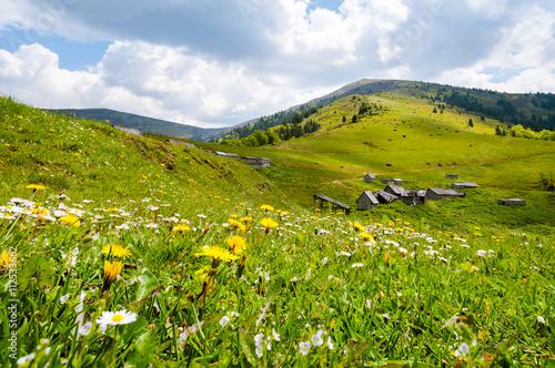 Foto auf Gartenposter Hugel Mountain landscape in the Ukrainian Carpathians