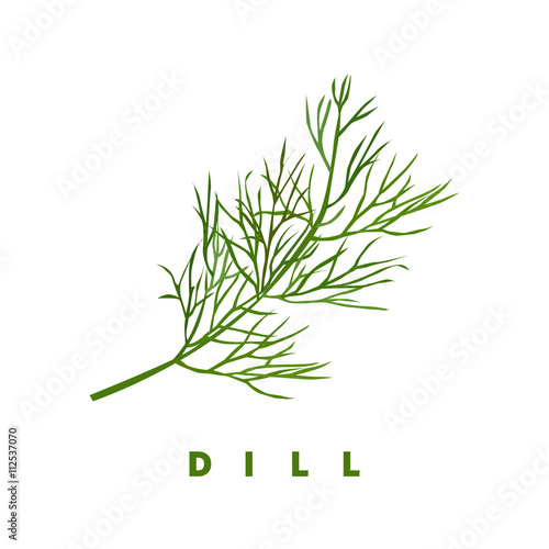 Fotografie, Tablou dill herb, food vector illustration, isolated logo