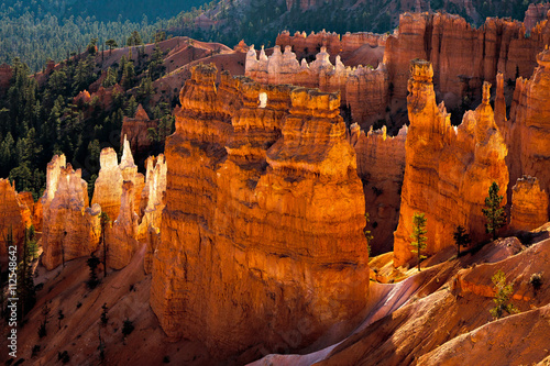 Foto op Plexiglas Bruin Scenic view of Bryce Canyon Southern Utah USA