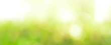 Abstract Light Green Bokeh Panoramic Header Background