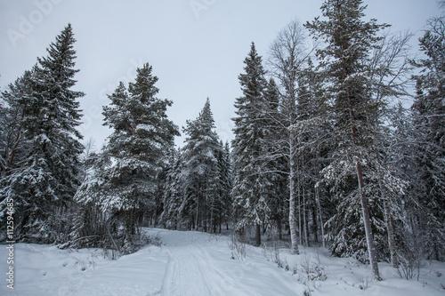 Photographie  Landschaft von Finnland