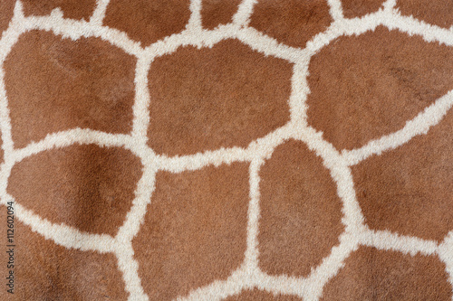 Photo sur Toile Les Textures Animal background texture of a giraffe spots pattern