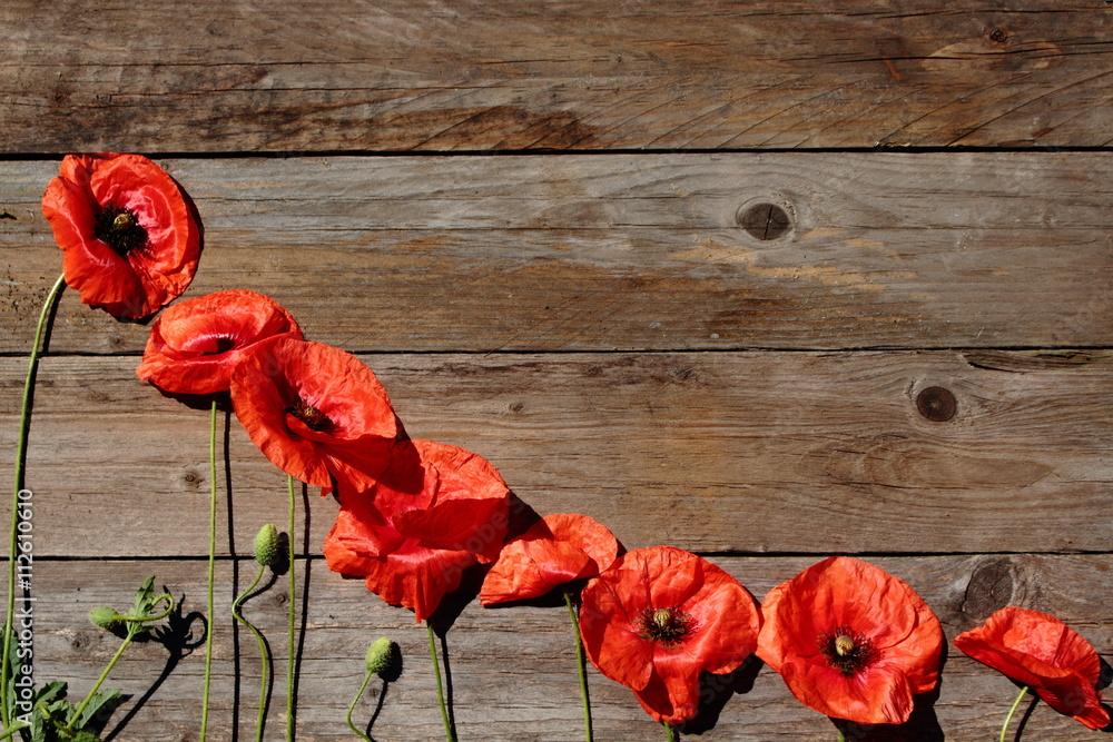 Fototapety, obrazy: Czerwone maki na tle z drewna.