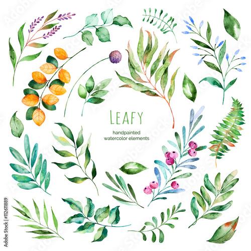 Kolekcja Leafy.22 Ręcznie malowane akwarele kwiatowymi elementami. Liście akwareli, gałęzie, jagody, liście. Idealne dla Ciebie unikalne projekty, szablon, zaproszenia ślubne, kartki okolicznościowe, grafika, cytaty, plakat