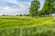 canvas print picture - Landschaft am Niederrhein 02