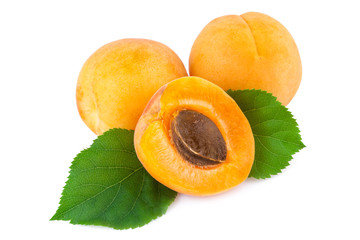 Fresh apricots with leaves isolated on white.