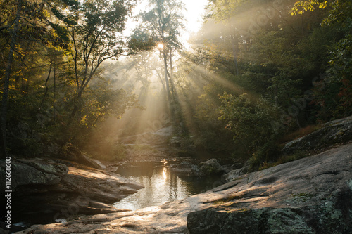 Flowing river, sunlight coming through surrounding trees