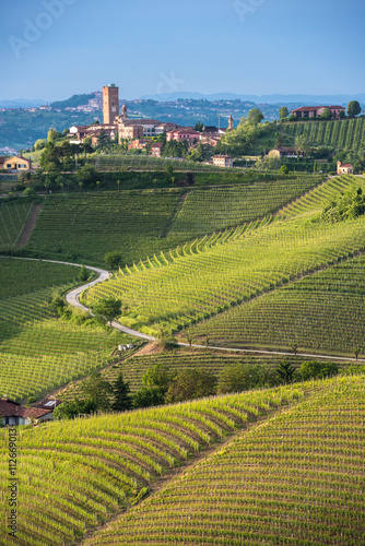 Photo Panorama of Piedmont vineyards and Barbaresco town