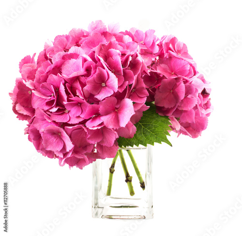 Vase Pink Hydrangea - Vase and Used Car Restimages.Org Gl Vase Joann on