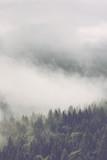 Atmospheric misty landscape - 112720878