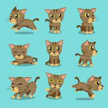 Cartoon Character Brown Tabby Cat Poses