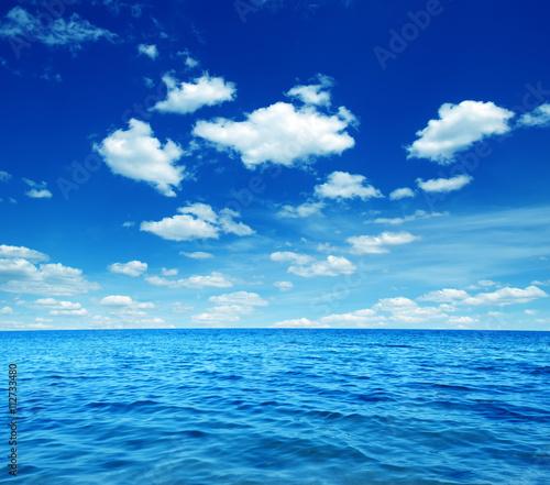 Aluminium Prints Green coral Blue sea water