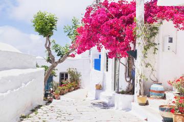Fototapeta Traditional greek street with flowers in Amorgos island, Greece
