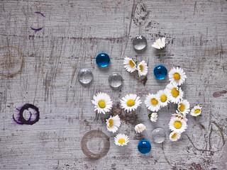 Holzgrund, Gänseblümchen Glassteine, Frühling, Muttertag, Tex