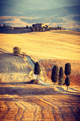 Fototapeta Beautiful sunset near Pienza, Tuscany, Italy