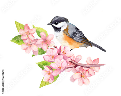 Bird on blossom branch with flowers. Watercolor