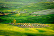 Rolling green fields in spring, Tuscany, Italy
