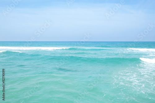 Canvas Prints Green coral Beautiful Mediterranean sea