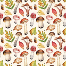 Watercolor Illustrations Of Mushrooms And Leaves.