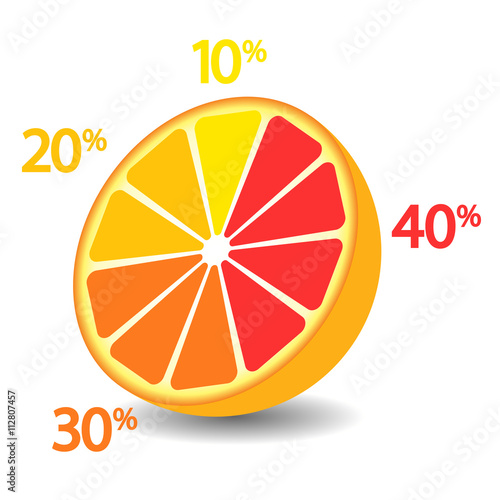 Infographics, circle divided into fractions to illustrate