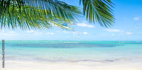 Foto op Plexiglas Caraïben Traumurlaub an einem einsamen Strand in der Karibik :)