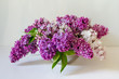 Beautiful bouquet of colored lilac on the table.