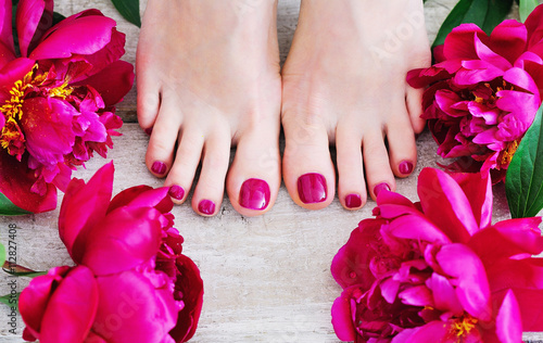 Feet with pink pedicure and peonies, top view
