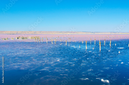 Foto op Aluminium Flamingo Beautiful salt lake with blue and pink water and wooden posts, natural landscape amazing background