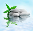 Stack of stones and a green flower on water. Spa relaxation concept