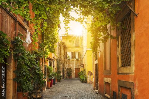 Fototapeta Old street in Trastevere in Rome obraz