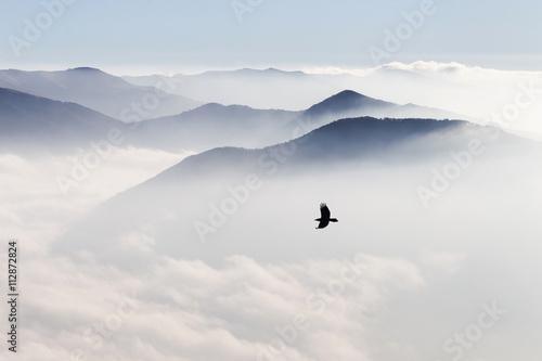 Tapety Minimalistyczne  sylwetki-gor-we-mgle-i-latajace-ptaki