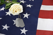 White Rose On American Flag Wi...
