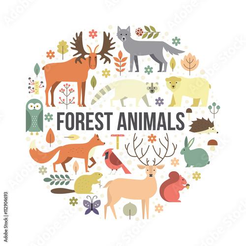 Forest Animals #112904693