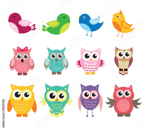 Photo Stands Owls cartoon cute owl and birds set of vector illustration