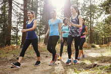 Group Of Women Runners Walking In A Forest, Close Up