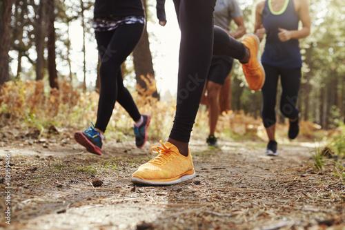 Foto  Beine und Schuhe von vier jungen Erwachsenen im Wald, Ernte