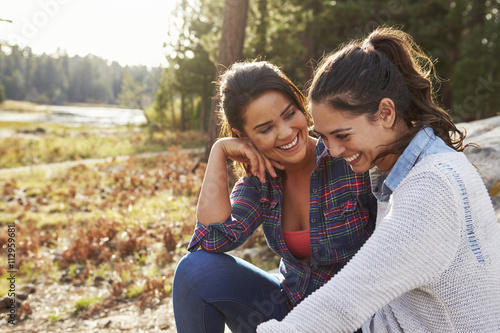 Cuadros en Lienzo Happy lesbian couple laughing together in the countryside