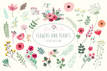 Flowers And Plants. Hand Drawn...
