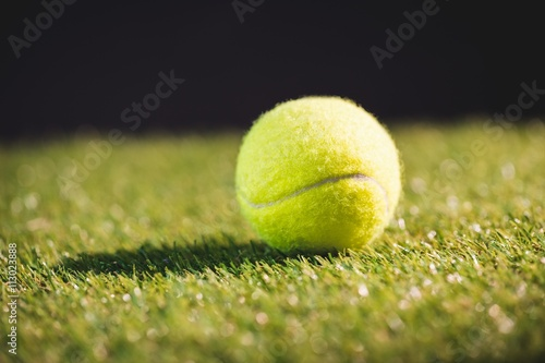 Close up of tennis ball Wallpaper Mural