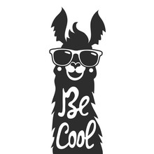Vector Illustration With Stylish Llama Animal In Sunglasses. Be Cool - Lettering Quote.