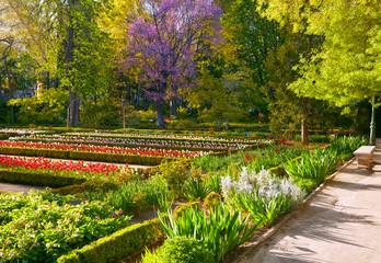 Madrid Botanic Garden - Real Jardin Botanico. Spring time