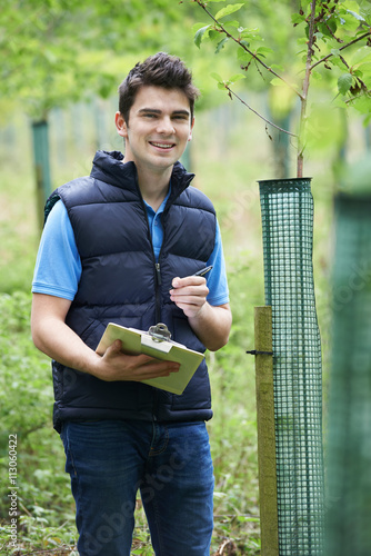 Valokuva  Forestry Worker With Clipboard Checking Young Trees