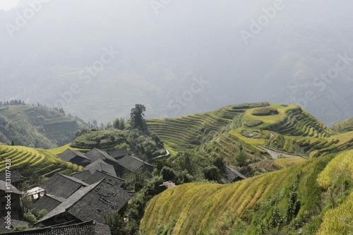 Fotobehang Rijstvelden Longsheng terraced ricefields, Guilin, Guangxi Province, China, Asia