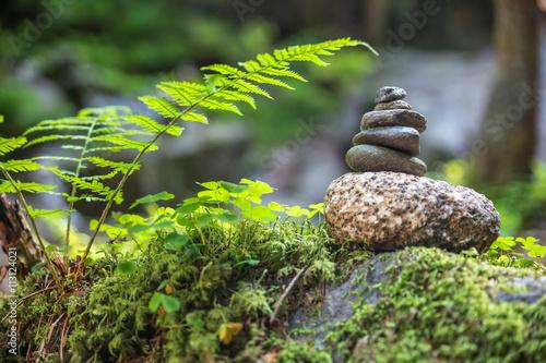 Steinmännchen im Wald Slika na platnu