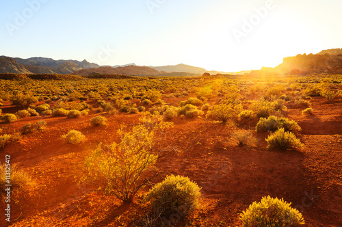 Foto auf Gartenposter Rot kubanischen Desert over sunset at Southern Nevada, Valley of Fire State Park, USA